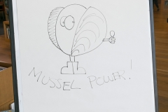 004_Mussel_Power